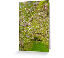 A walk among blossoms Greeting Card