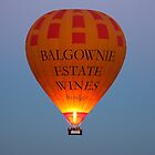Over the Yarra Valley by ImagesbyDi