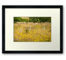 Where Are We? Framed Print
