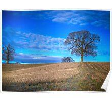 Autumn Landscape Berkshire Poster