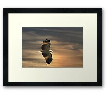 Whistling Supper Framed Print