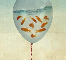 balloon fish 02 by Vin  Zzep