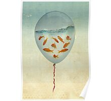 balloon fish 02 Poster