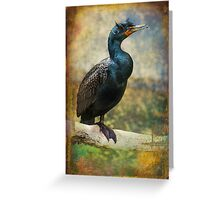 Finer Feathered Friends: Double Crested Cormorant Greeting Card