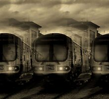 The Night Train by Maria Murphy