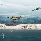 The Battle of Britain by James Biggadike