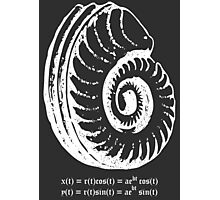 Spiral Shell with Math (white) Photographic Print