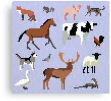 Animals of the UK Canvas Print