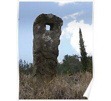 Natural Sculpture Poster