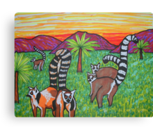 Lemurs in the grass Canvas Print