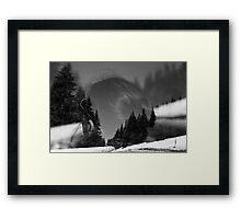 my winter bird Framed Print