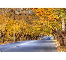Hahndorf Autumn, Adelaide Hills, SA Photographic Print