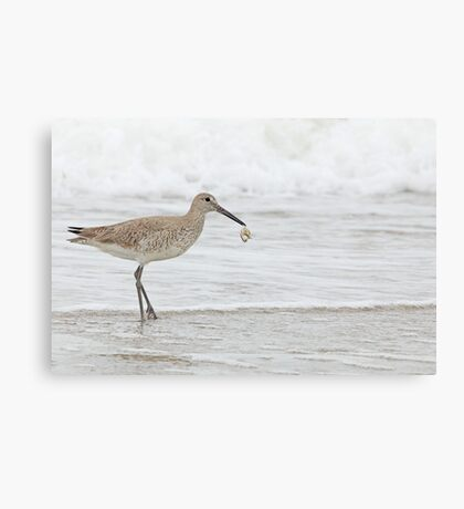 Catch Of The Day ~ Canvas Print