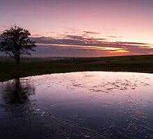 icy dew pond on ditchling. by James Calvey