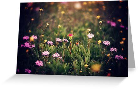Secret Garden IV by FaireUnVoeu