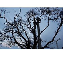 Skeletal Silhoutte Photographic Print