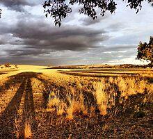 Stockinbingal Sunset # 2 by George Petrovsky
