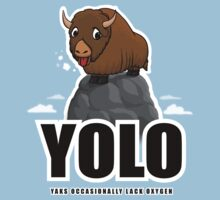 YOLO - Yaks Occasionally Lack Oxygen by Pat Scullion
