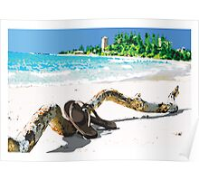 Sunny Empty Beach Scene with Driftwood and Flip Flops Poster