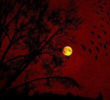 Red Sky - 031 by LBStudios