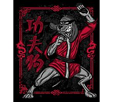 HKP, The Kung Fu Mutt! Photographic Print