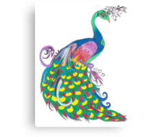 Rainbow Peacock Canvas Print