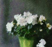 White Azalea by Gilberte