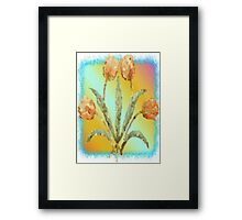Colourful Tulips Framed Print