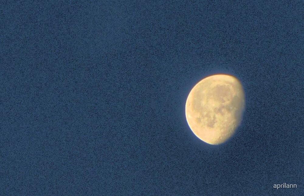 Moon Over Texas by aprilann