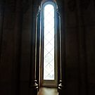Window at the Smithsonian - Washington D.C. by Bine