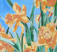 Golden Daffodils Sticker