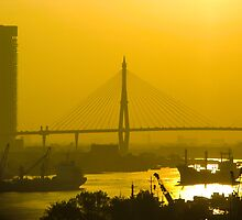 Rama VIII Bridge Bangkok Sunset by mlphoto