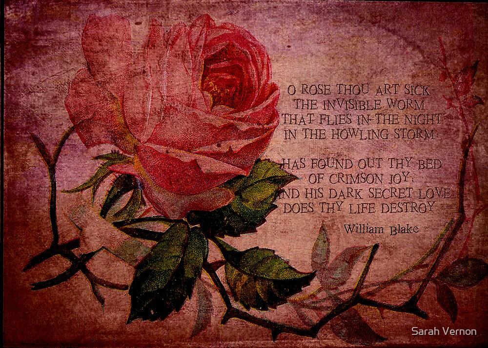 O Rose Thou Art Sick by Sarah Vernon