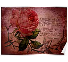 O Rose Thou Art Sick Poster