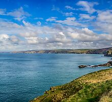 Port Isaac to Tintagel View by Chris Thaxter