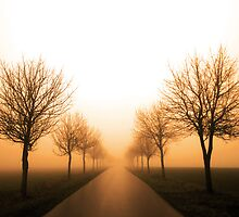 Road to Nowhere by Norbert Karpen