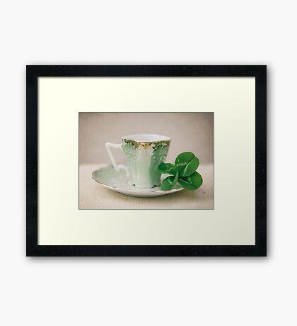 Four Leaf Clover 1 Framed Print