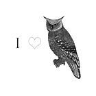 I <3 Owls by samclaire