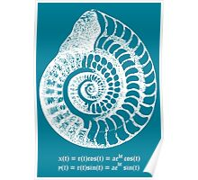 Spiral Shell with Math (blue) Poster