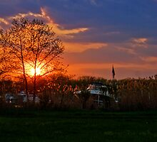 Annapolis Sunset by Artondra Hall
