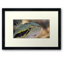 Eastern Water Dragon II Framed Print