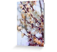 Timid Love Greeting Card