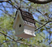 Bird House by JMG1883