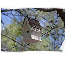 Bird House Poster