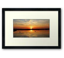 Sunset Swans Framed Print