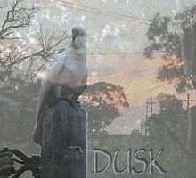 Dusk ~ currently favourite time.  by MrJoop