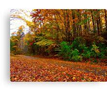 Vibrant October Canvas Print