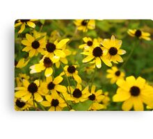 A Patch of Yellow Canvas Print