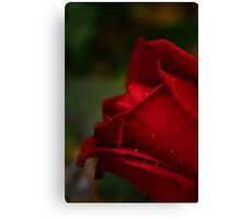 Red Tears Canvas Print