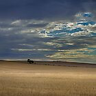 Clouds over the fields by Jessy Willemse